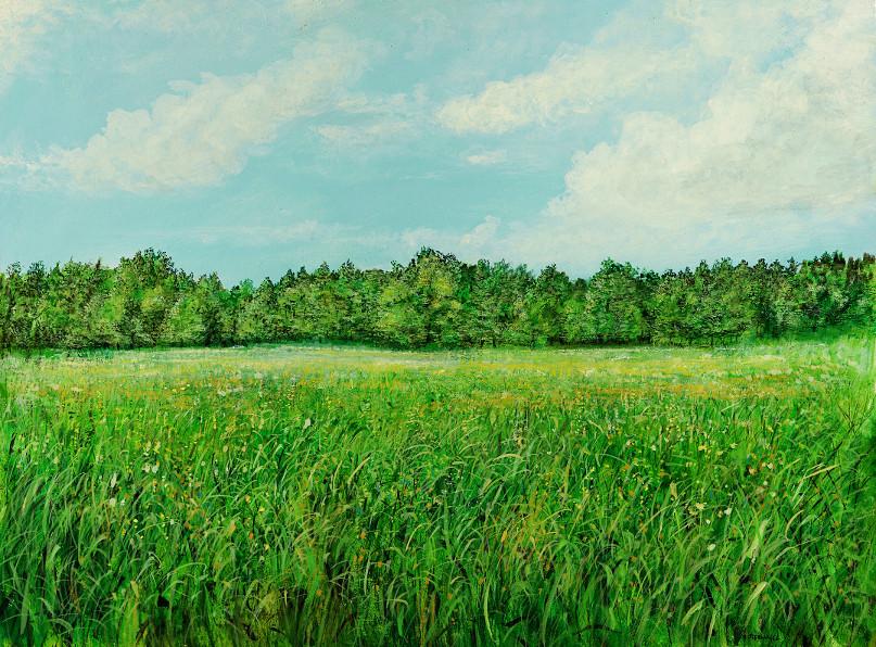 Naturmauer - Ölbild / Holztafel - Gemälde von  S t e r n h a g e l